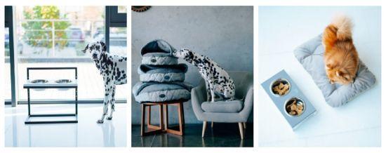 Меблі для тварин Harley and Cho: те, що потрібно вашому улюбленцю