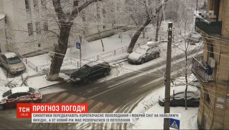 Буде сніг чи ні: комунальники і метеорологи розійшлись у думках щодо погоди
