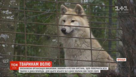 Зоозахисна організація у Франції викуповує звіринець, щоби повернути тварин у дику природу