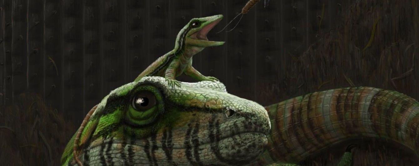 Згорнуті разом матір та дитя: мисливці за скам'янілостями знайшли найдавніший у світі доказ батьківської турботи