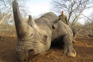 Старі і агресивні: у Шуфрича виправдовують полювання в Африці на рідкісних тварин