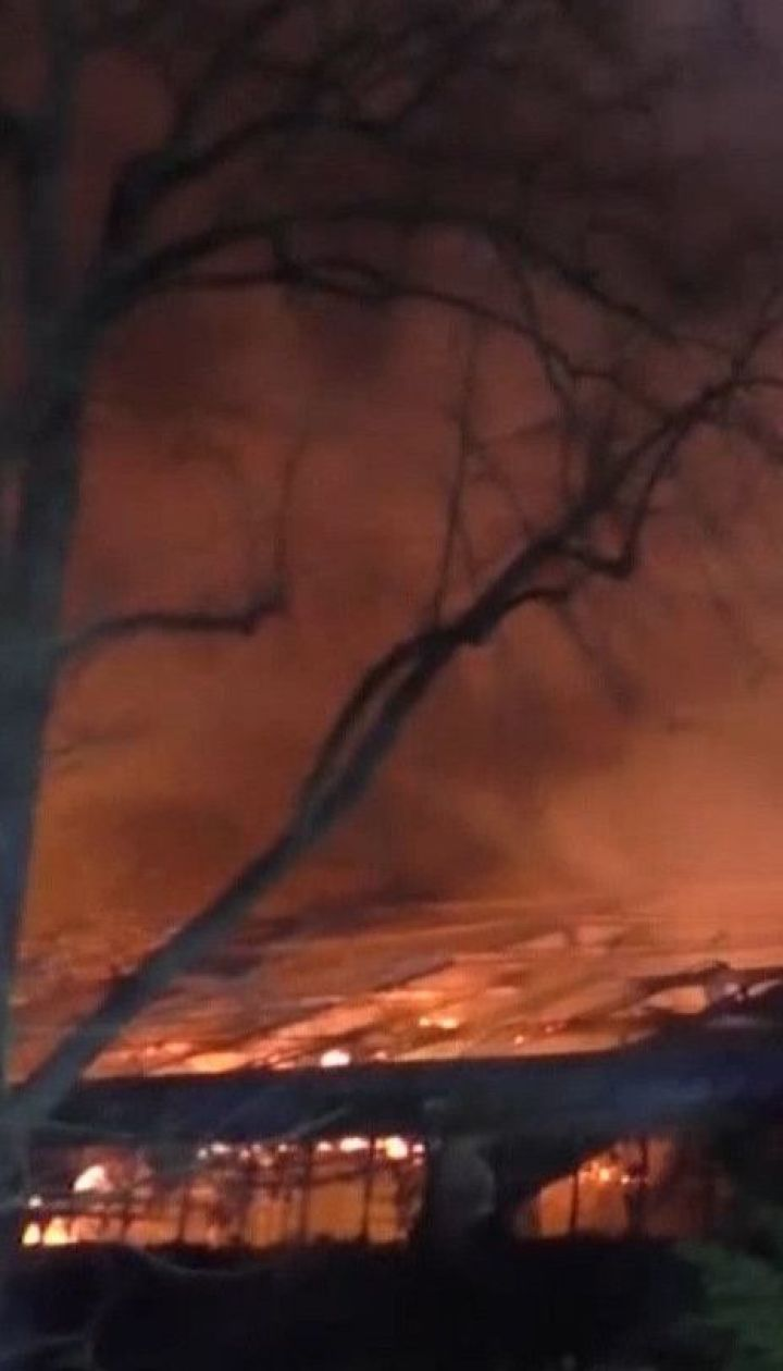 У німецькому зоопарку в новорічну ніч сталась пожежа: загинули 30 тварин