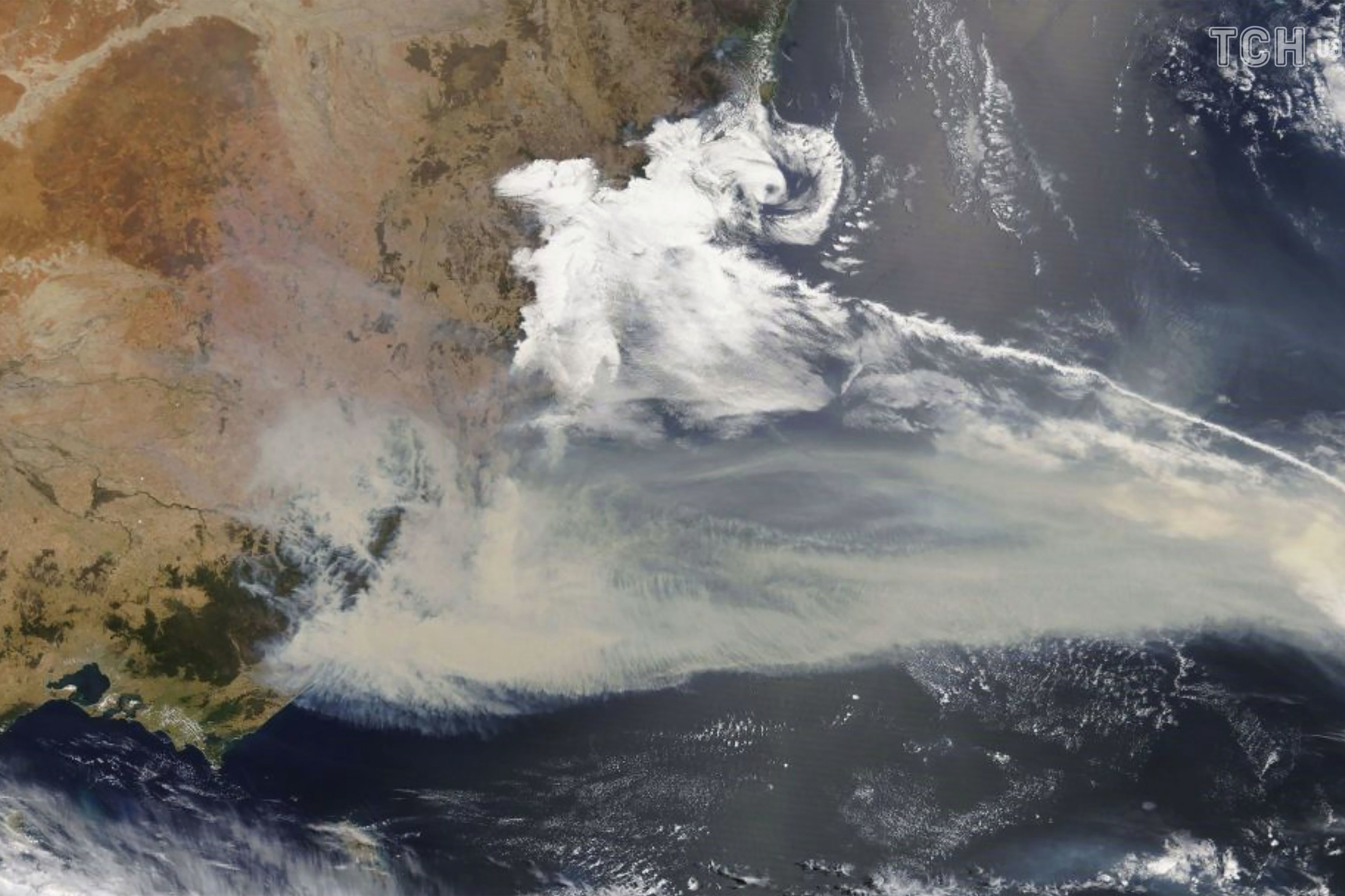 Лісові пожежі в Австралії_20