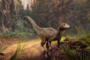Хищник размером с коня. Ученые выяснили, действительно ли существовали загадочные карликовые тираннозавры