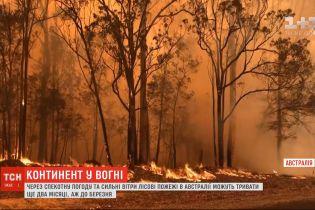 Из-за жаркой погоды и сильных ветров лесные пожары в Австралии могут продолжаться еще 2 месяца