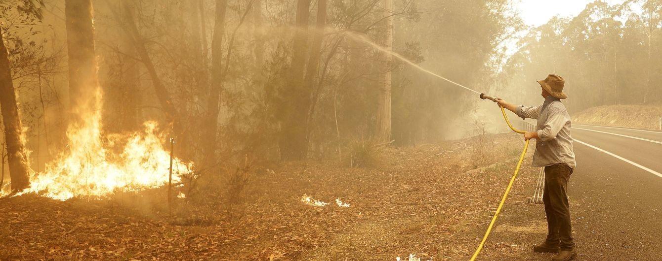 В Австралії зросла кількість загиблих унаслідок масштабних лісових пожеж