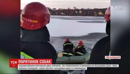 Спасение из-под льда: в Хмельницком чрезвычайники вытащили из озера двух немецких овчарок