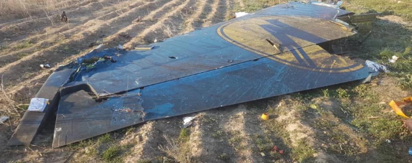 В МАУ назвали имена пилотов самолета, который разбился под Тегераном