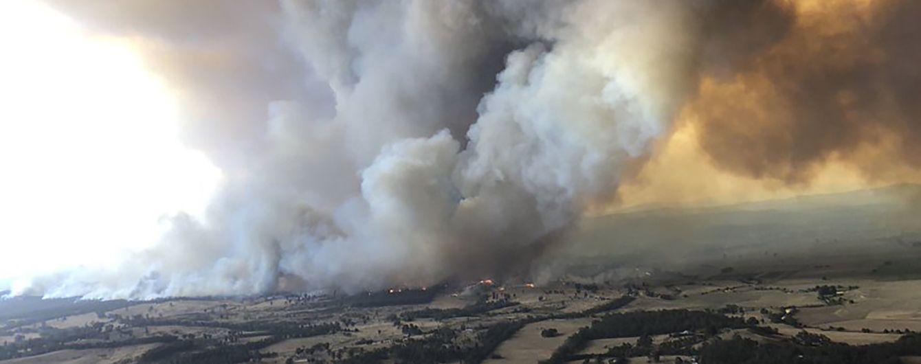 Лесные пожары в Австралии: полиция обвинила 24 человека в умышленном поджоге