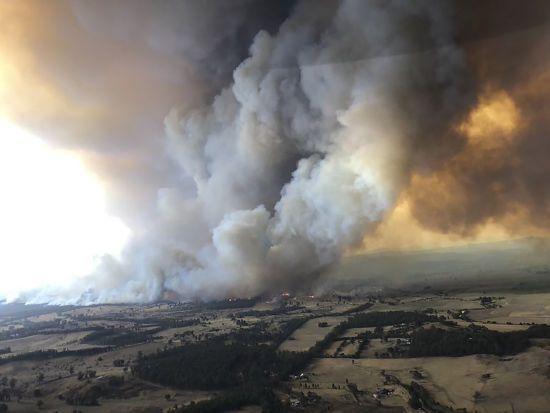 Лісові пожежі в Австралії: поліція звинуватила 24 людини у навмисному підпалі