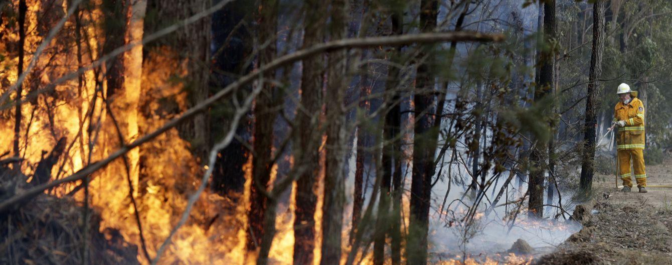 Масштаби пожежі з космосу та знищені полум'ям пейзажі: як шириться вогняне лихо Австралії у фото до та після