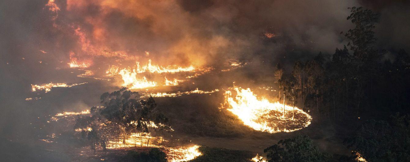 Австралія відмовилася від допомоги України в гасінні лісових пожеж – ЗМІ