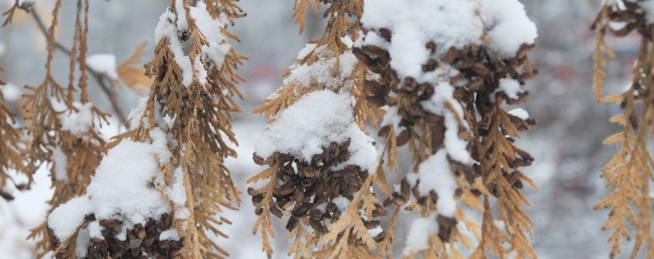 Погода на четверг: в Украине будет мокрый снег и гололед