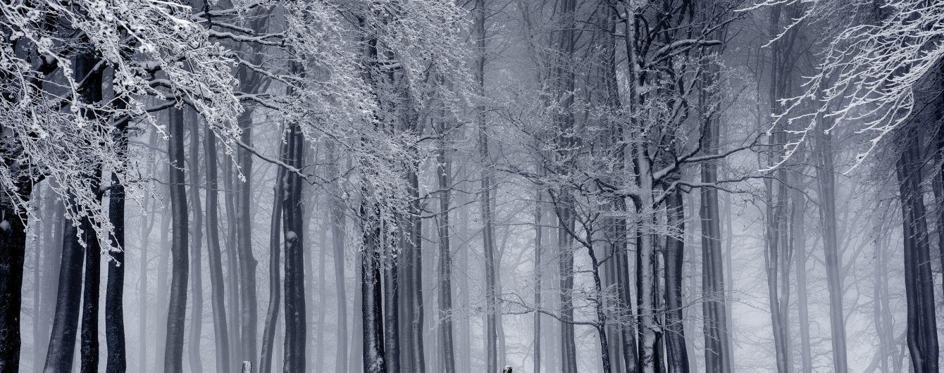 Густий туман та мокрий сніг: погода на п'ятницю