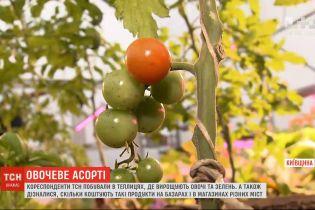 Зеленое в январе: корреспонденты ТСН побывали в теплицах, где выращивают овощи и зелень