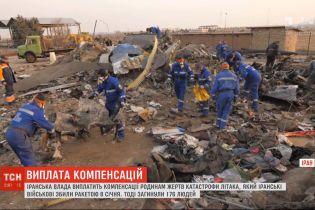 Влада Ірану виплатить компенсацію сім'ям загиблих у авіатрощі біля Тегерана