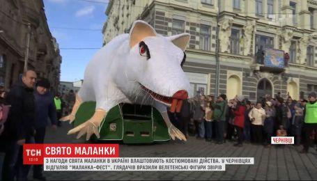 По случаю праздника Маланки в Украине устраивают костюмированные представления и развлечения