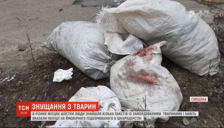 Шкуродер у Шостці: містяни знайшли кілька мішків із убитими собаками та котами