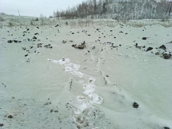 Російський Челябінськ засипало зеленим снігом