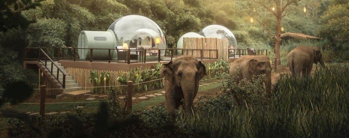 В Таиланде туристам предлагают остановиться в отеле со слонами