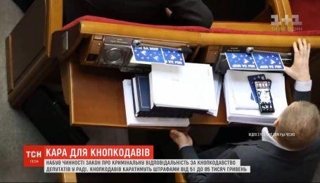 Штрафи до 85 тисяч гривень: голосування за сусіда у Раді стало кримінальним злочином