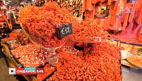 Мій путівник. Сардинія – квіти у повітрі та столиця червоних коралів