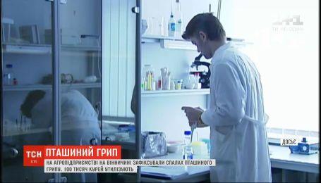 Вспышку птичьего гриппа зафиксировали в Винницкой области