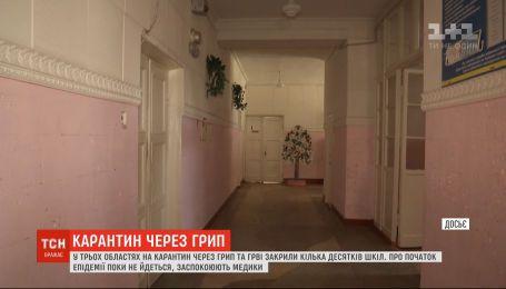 Несколько десятков украинских школ закрыли на карантин из-за гриппа и ОРВИ