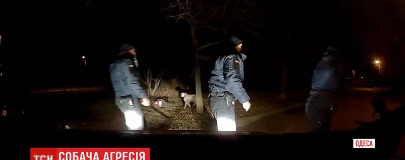 Полицейские показали видео обезвреживания пса в Одессе, который терзал свою хозяйку