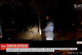Копы застрелили агрессивного пса в Одессе, ибо тот во время прогулки напал на хозяйку