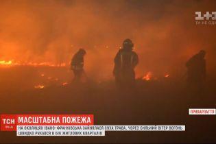 Біля летовища в Івано-Франківську палав сухостій