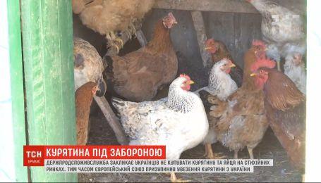 На Вінниччині знищили понад сотню тисяч курей через пташиний грип