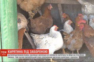В Винницкой области уничтожили более сотни тысяч кур из-за птичьего гриппа