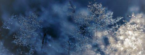 Погода на пятницу: в Украине будет до 7 градусов тепла