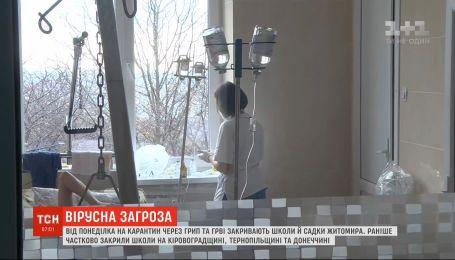 Через грип та ГРВІ на карантин зачиняють школи й садки Житомира