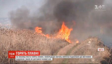 Плавні горять на околицях Одеси: вогонь упритул підібрався до житлових будинків