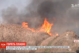 Плавни горят в окрестностях Одессы: огонь вплотную подобрался к жилым домам