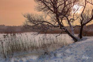Лунный календарь на 30-31 января: дни, когда в салоне красоты можно делать все