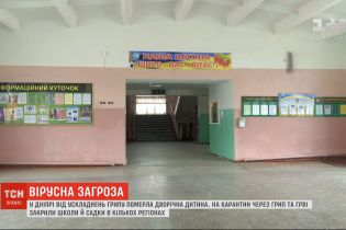 Школи та садки Житомира зачиняють на карантин через грип та ГРВІ