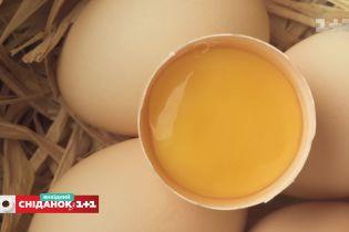 Как выбрать качественные яйца - эксперт по качеству продуктов Оксана Прокопенко