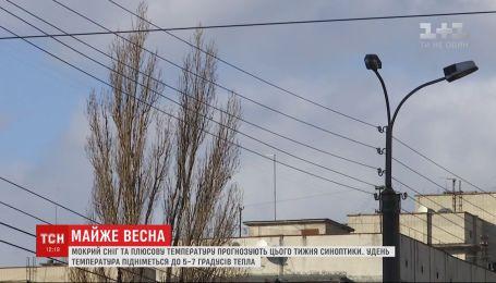 Мокрый снег и плюсовую температуру прогнозируют в Украине синоптики