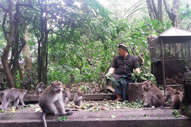 Індонезія, Балі, для блогів_4