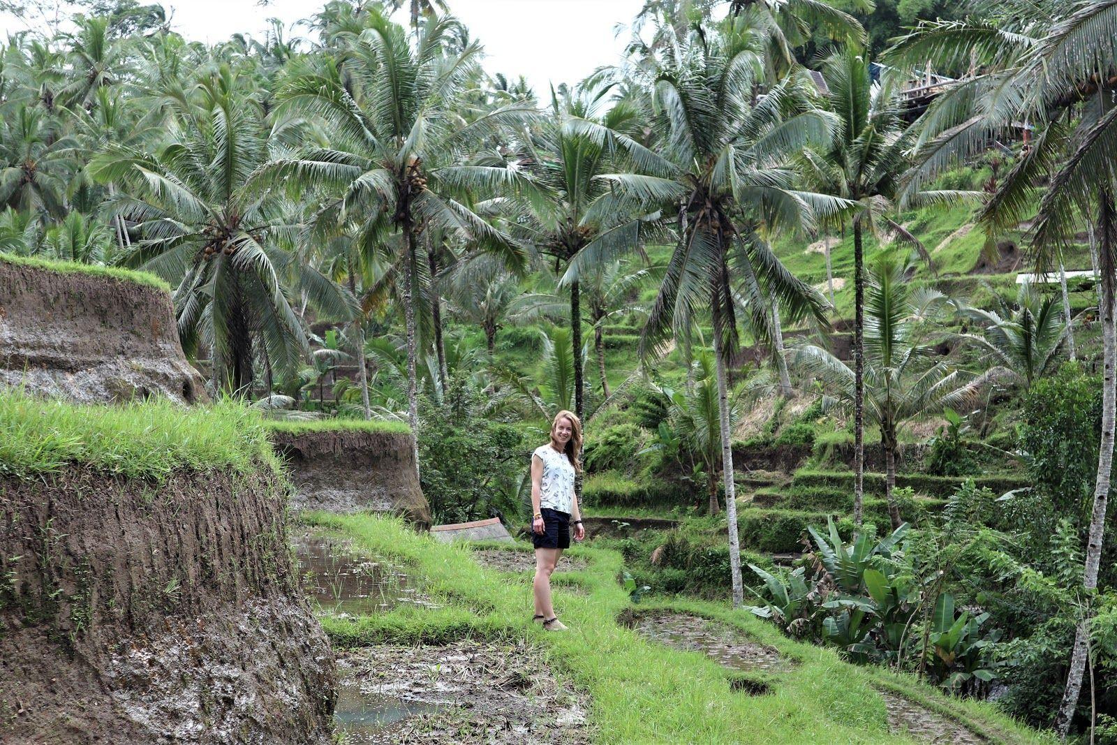 Індонезія, Балі, для блогів_5