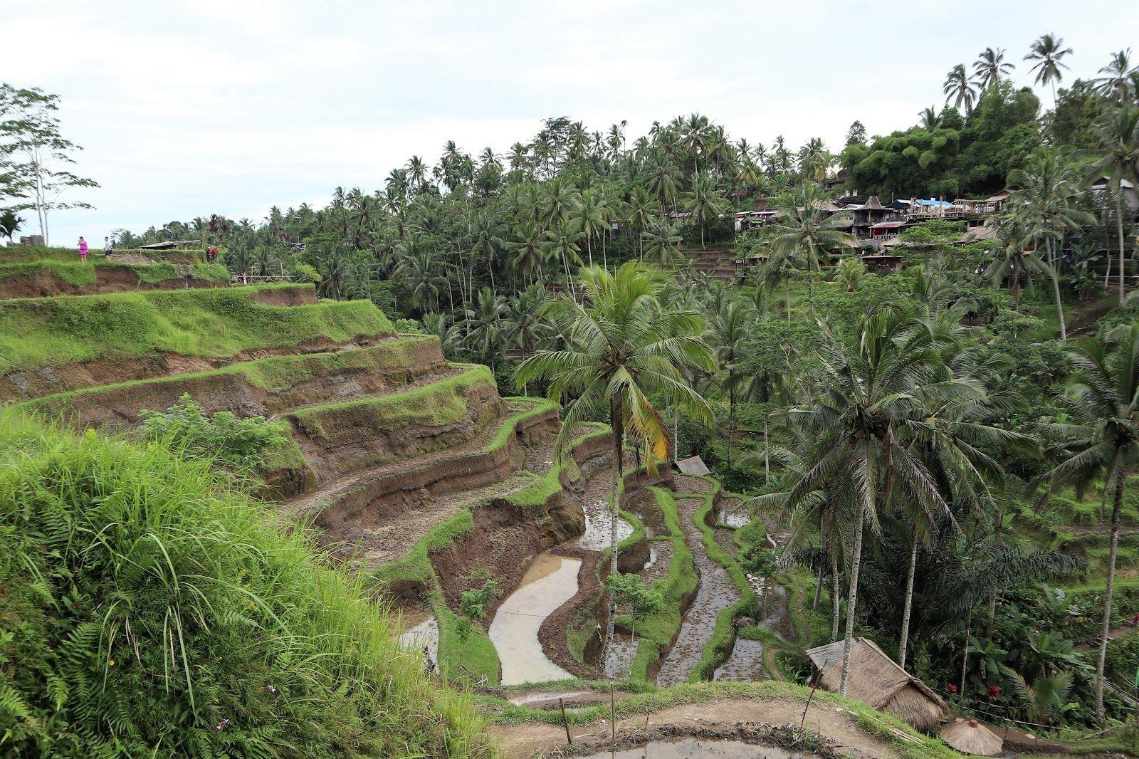 Індонезія, Балі, для блогів_6