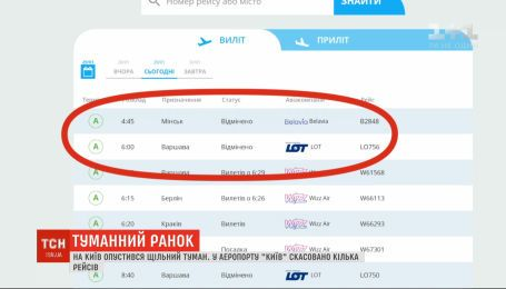 """Через щільний туман в аеропорту """"Київ"""" скасували кілька рейсів"""