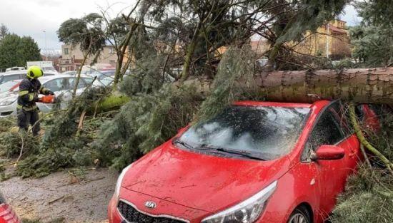 Пошкоджені автомобілі та повалені дерева. Чехією пронісся потужний ураган