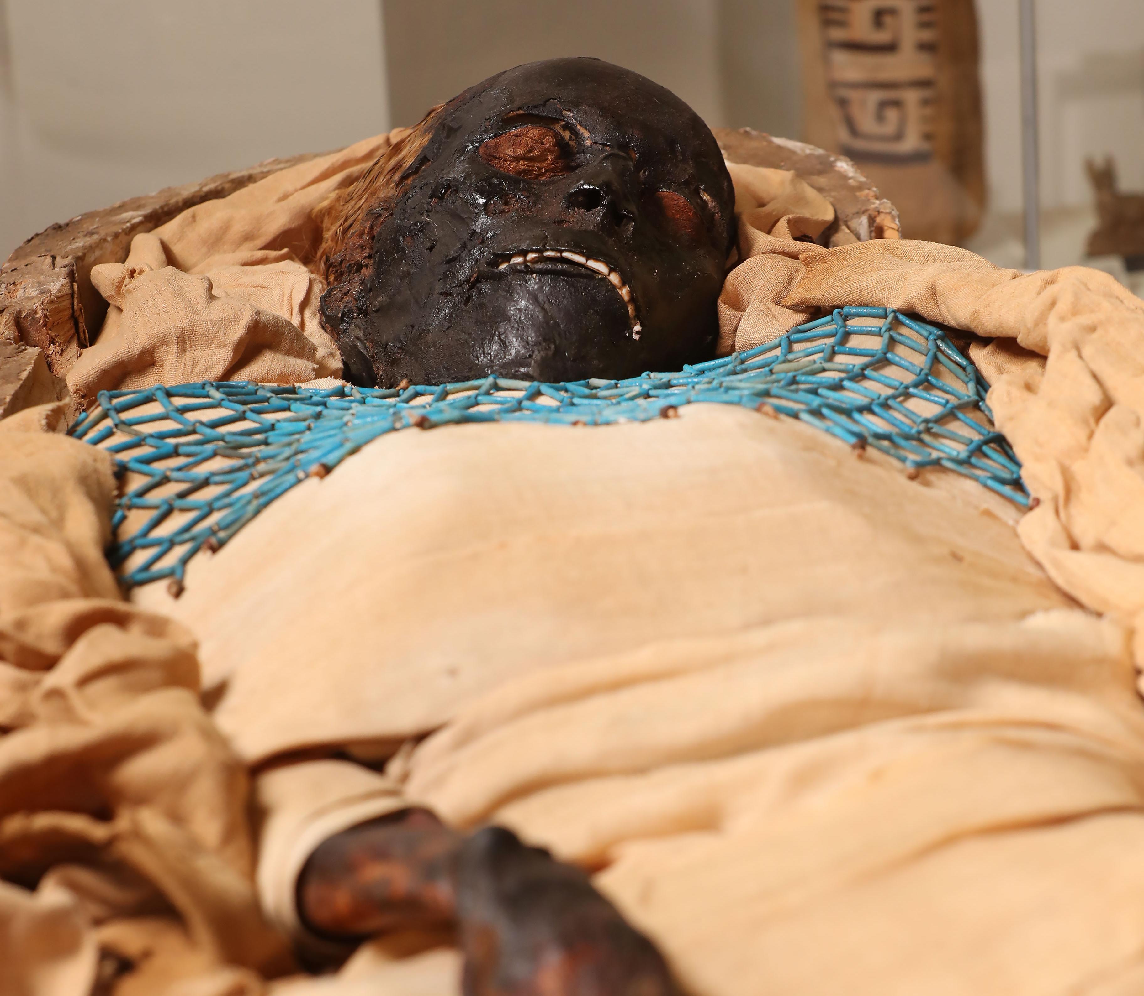 мумія такабуті 3