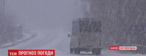 Житомирщину засипає рясним снігом: за дві години випало до п'яти сантиметрів