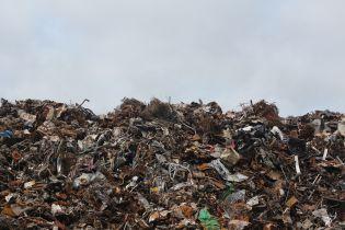 Британские мусорщики рылись в мусоре и вернули семье 20 тысяч фунтов стерлингов