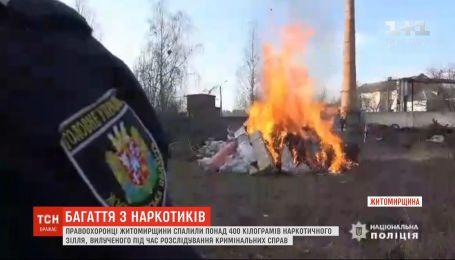 Более 400 килограммов наркотиков сожгли правоохранители Житомирщины